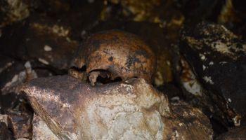 Вечерње новости, 25.2.2014,  Г. Милановац: Нађене људске кости