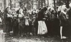Жене и деца Поткозарја заробљени у хрватско-немачкој офанзиви тзв. операција Западна Босна, Козара, јул 1942. Фото: Музеј жртава геноцида 80/80