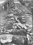 Жртве хрватског усташког логора Јасеновца, тела извађена из Саве на насипу у Београду Фото: Вечерње новости
