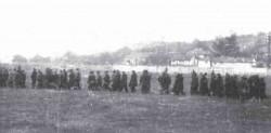 Краљево: Одвођење талаца на стрељање, 15. октобар 1941. године Фото: Народни музеј Краљево