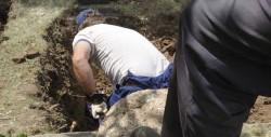 На Јелици ексхумација тела двојице убијених Равногораца Фото: З.Јовановић, Вечерње новости