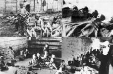 Хрватски усташки логори за Српчиће Фото: Колаж НСПМ