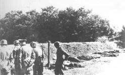 Стрељање на стратишту у Јајинцима Фото: Музеј историје Југославије Бр. 15210, Википедија
