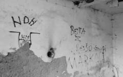 Логор Јасеновац, подлогор Кожара: Графити хрватског нацизма Фото: Портал Новости