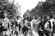 Усташка милиција води заробљене Козарчане фото: Музеј револуције Козара